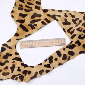 Пони, леопард-poni1-11