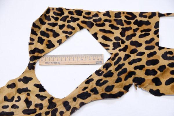 Пони, леопард-poni1-12