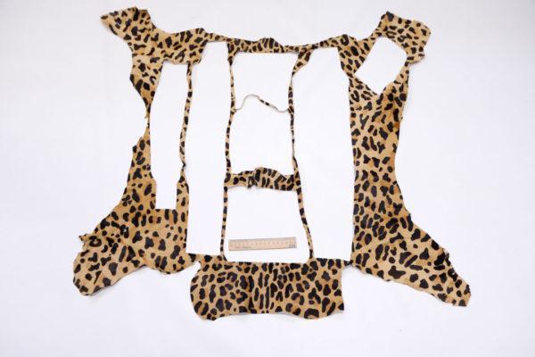 Пони, леопард, 54 дм2.-poni1-18