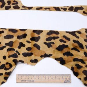Пони, леопард-poni1-3