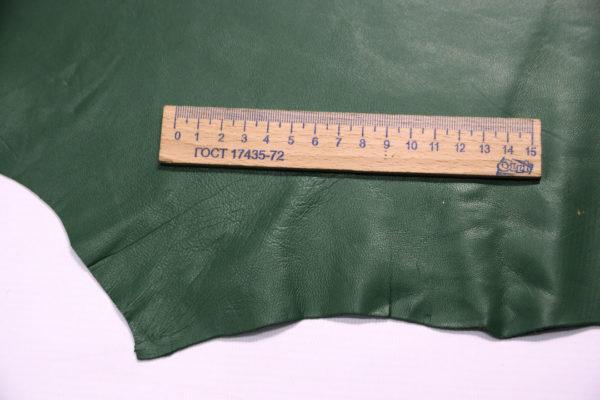 Кожа одёжная МРС, зелёная, 5,5 фут. (51 дм2.)-301092