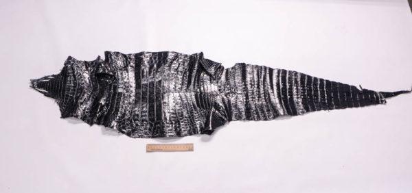 Кожа каймана, чёрная, 131х33 см.- kr2-2