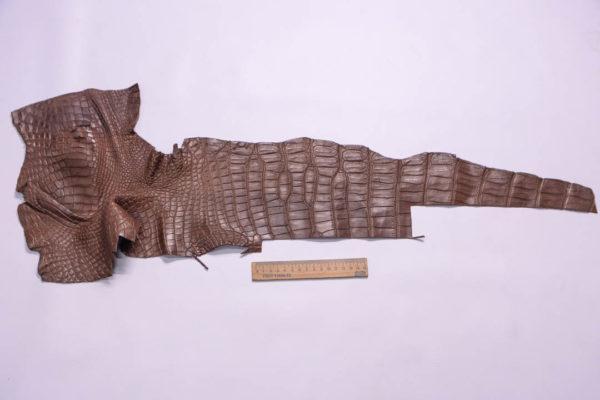 Кожа кроко, коричневая, 81х17 см.- kr2-6