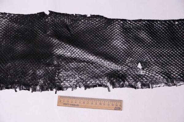 Кожа питона, чёрная, 245х20 см.-zm3-10
