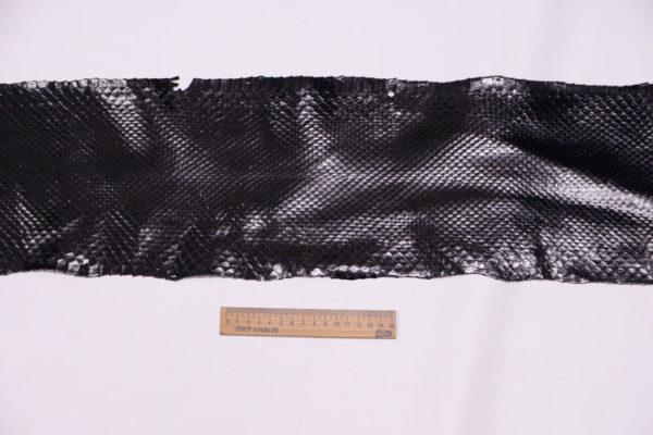 Кожа питона, чёрная, 220х20 см.-zm3-9