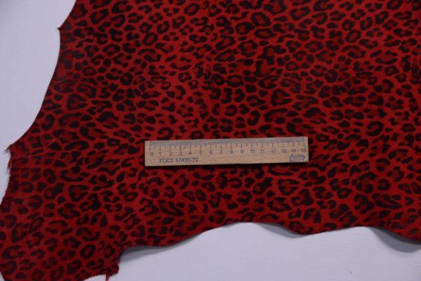 Велюр МРС, красный леопард, 51 дм2.-108770