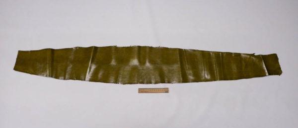 Кожа змеи (Karung), оливковая, 145х21 см.-zm4-25