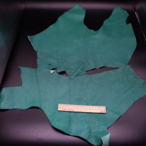 Кожа КРС, зеленая, 24 дм2.-1-224