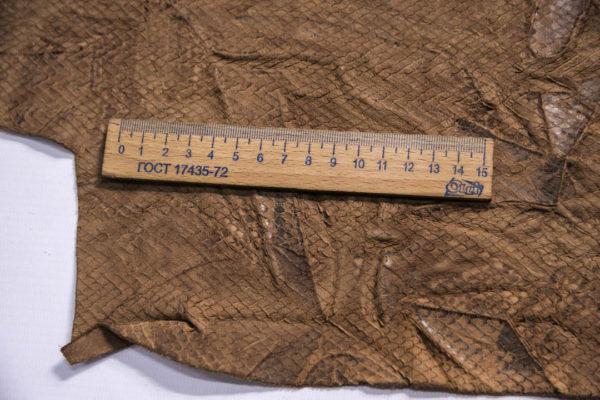 Кожа КРС жатка с принтом и тиснением, капучино, 77 дм2.-109261