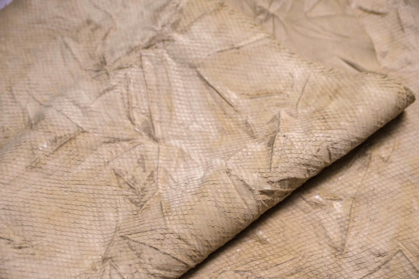Кожа КРС жатка с принтом и тиснением, светло-бежевая, 68 дм2.-109264
