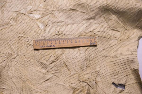 Кожа КРС жатка с принтом и тиснением, светло-бежевая, 89 дм2.-109265