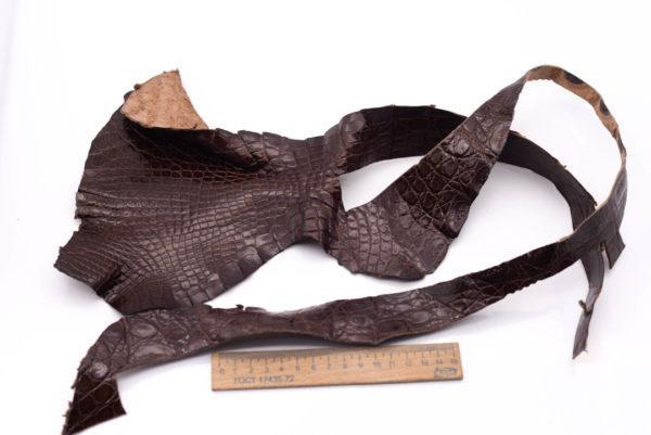 Кожа крокодила, коричневая- kr-120