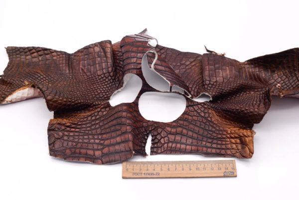 Кожа крокодила, коричнево-коньячная- kr-174