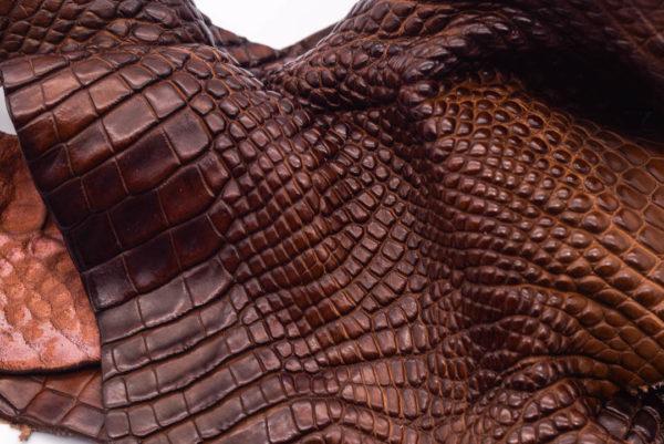 Кожа крокодила, коричнево-коньячная- kr-175