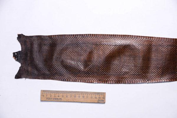 Кожа змеи, коричневая, 88х11,5 см.-zm4-120