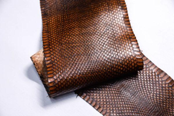 Кожа змеи, коричневая, 89х13 см.-zm4-121