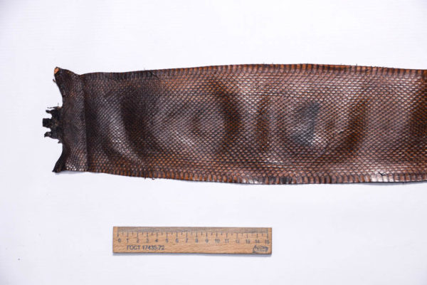 Кожа змеи, коричневая, 88х12 см.-zm4-127