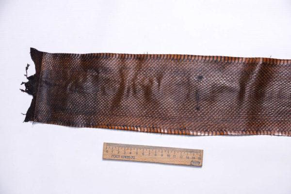 Кожа змеи, коричневая, 94х12,5 см.-zm4-138