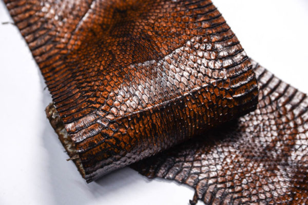 Кожа змеи, коричневая, 97х14,5 см.-zm4-155