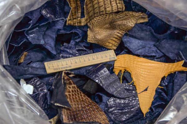 Микс кожи каймана (крокодила) 1 кг - kr-opt1