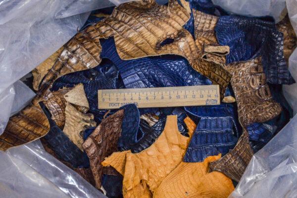 Микс кожи каймана (крокодила) 3 кг - kr-opt2