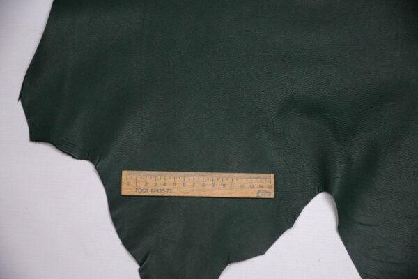 Кожа козы, темно-зеленая, 57 дм2, Russo di Casandrino S.p.A.-109846