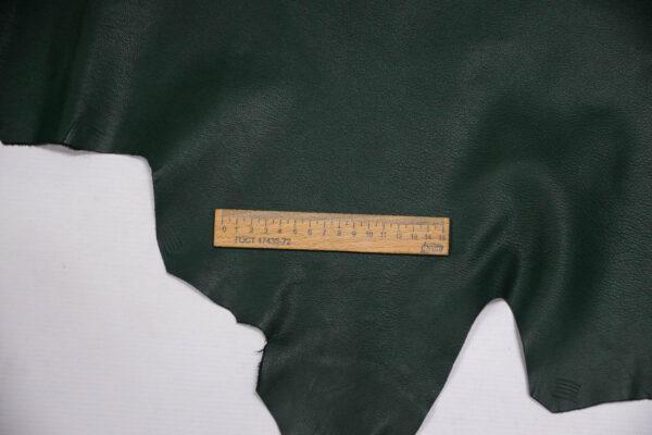 Кожа козы, темно-зеленая, 67 дм2, Russo di Casandrino S.p.A.-109848
