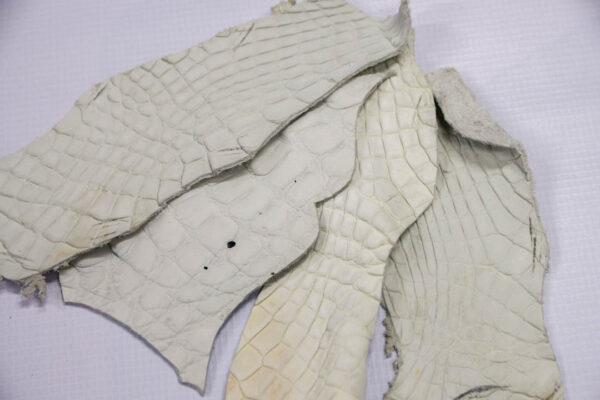 Кожа крокодила, темно-белая- kr-187
