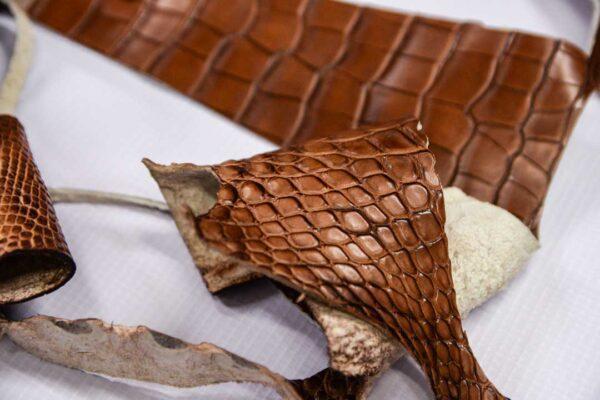 Кожа крокодила, коричневая- kr-195