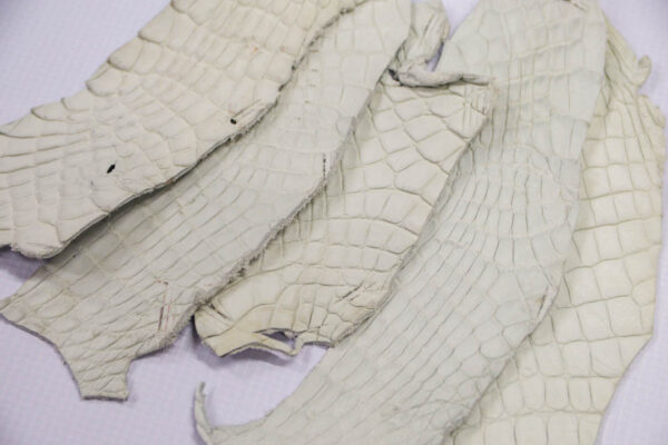 Кожа крокодила, темно-белая- kr-197