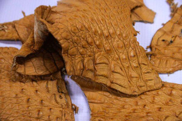 Кожа крокодила, рыжая- kr-219
