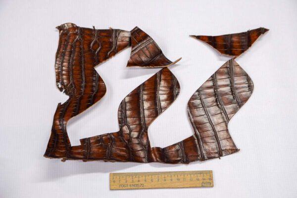 Кожа крокодила, коричнево-коньячная- kr-221