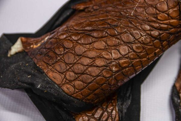 Кожа крокодила, коричневая- kr-226