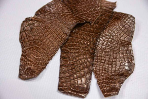 Кожа крокодила, коричневая- kr-233