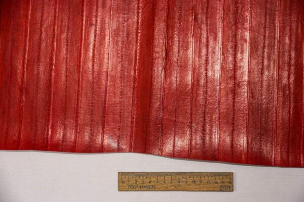Кожа угря (пластины), красная, 89 дм2-ugr-21