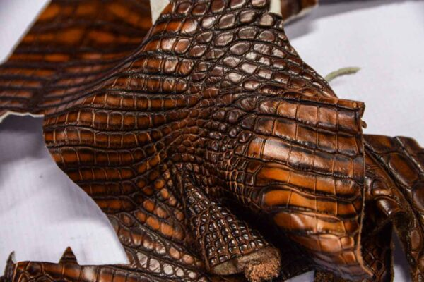 Кожа крокодила, коричнево-коньячная- kr-292