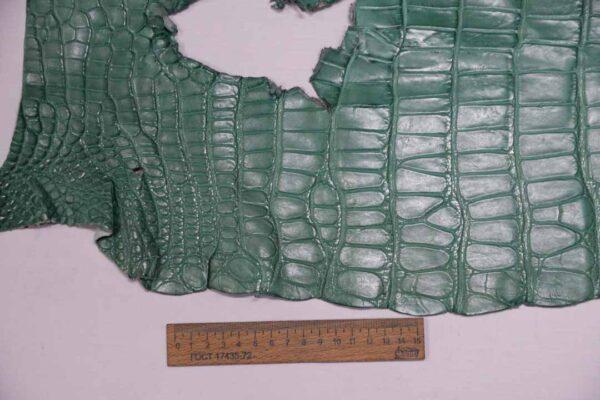 Кожа крокодила, светло-бирюзовая, 53х34 см.- kr-308