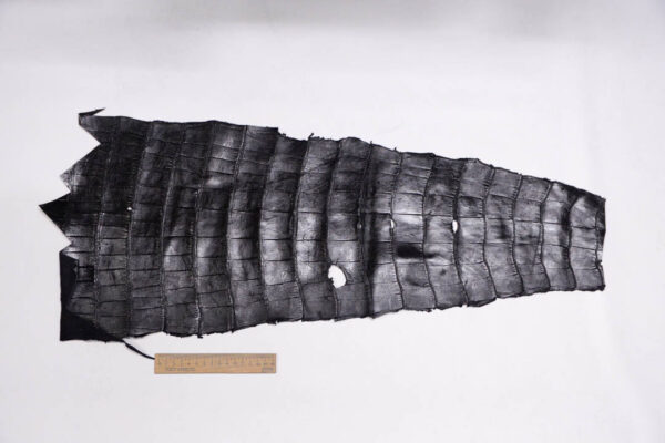 Кожа крокодила, черная, 72х30 см.- kr-331