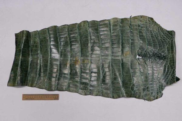 Кожа крокодила, зеленая, с эффектом пул ап (Pull Up) 76х37 см.- kr-341