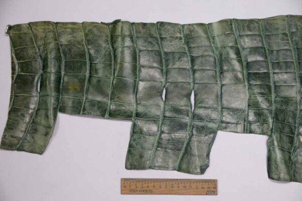 Кожа крокодила, зеленая, с эффектом пул ап (Pull Up) 120х38 см.- kr-342