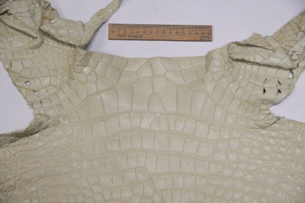 Кожа крокодила, светло-бежевая- kr-350
