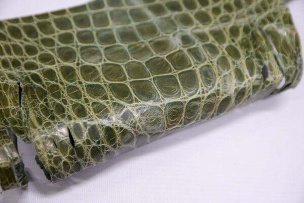 Кожа крокодила, зеленая, с эффектом пул ап (Pull Up)- kr-352
