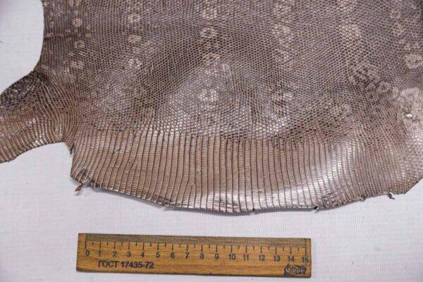 Кожа игуаны, капучино, 31х28 см.- ign-013
