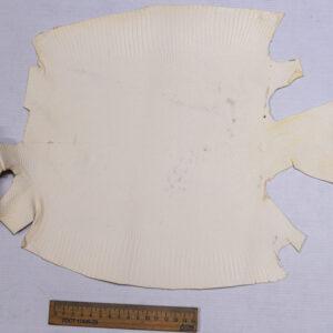 Кожа игуаны, молочная, 36х31 см.- ign-026