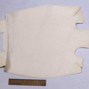 Кожа игуаны, молочная, 40х32 см.- ign-028