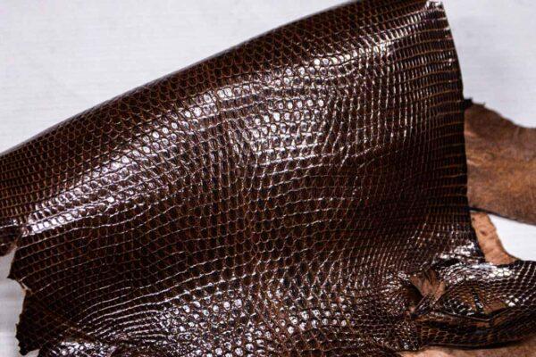 Кожа игуаны, коричневая, 39х21 см.- ign-003