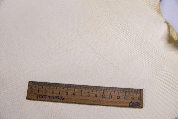 Кожа игуаны, молочная, 46х36 см.- ign-033