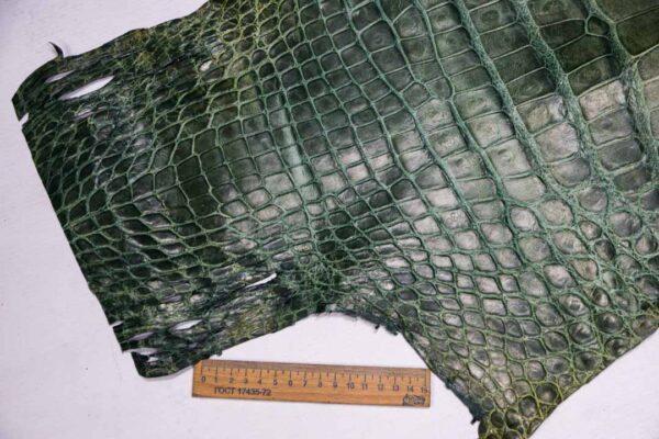 Кожа крокодила, зеленая, с эффектом пул ап (Pull Up)- kr-354