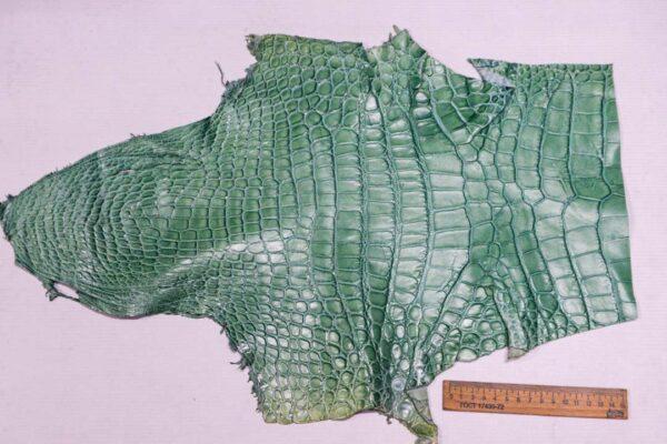 Кожа крокодила, светло-бирюзовая- kr-361