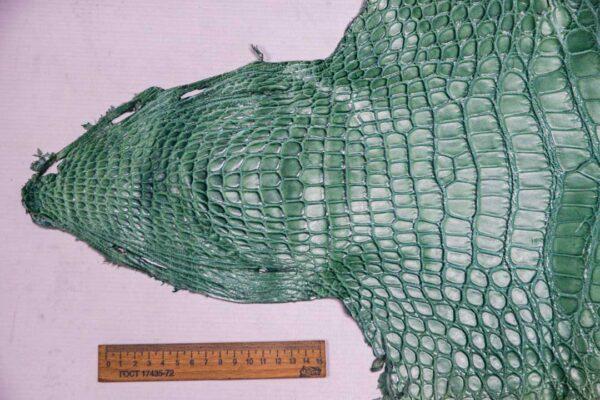 Кожа крокодила, светло-бирюзовая- kr-362
